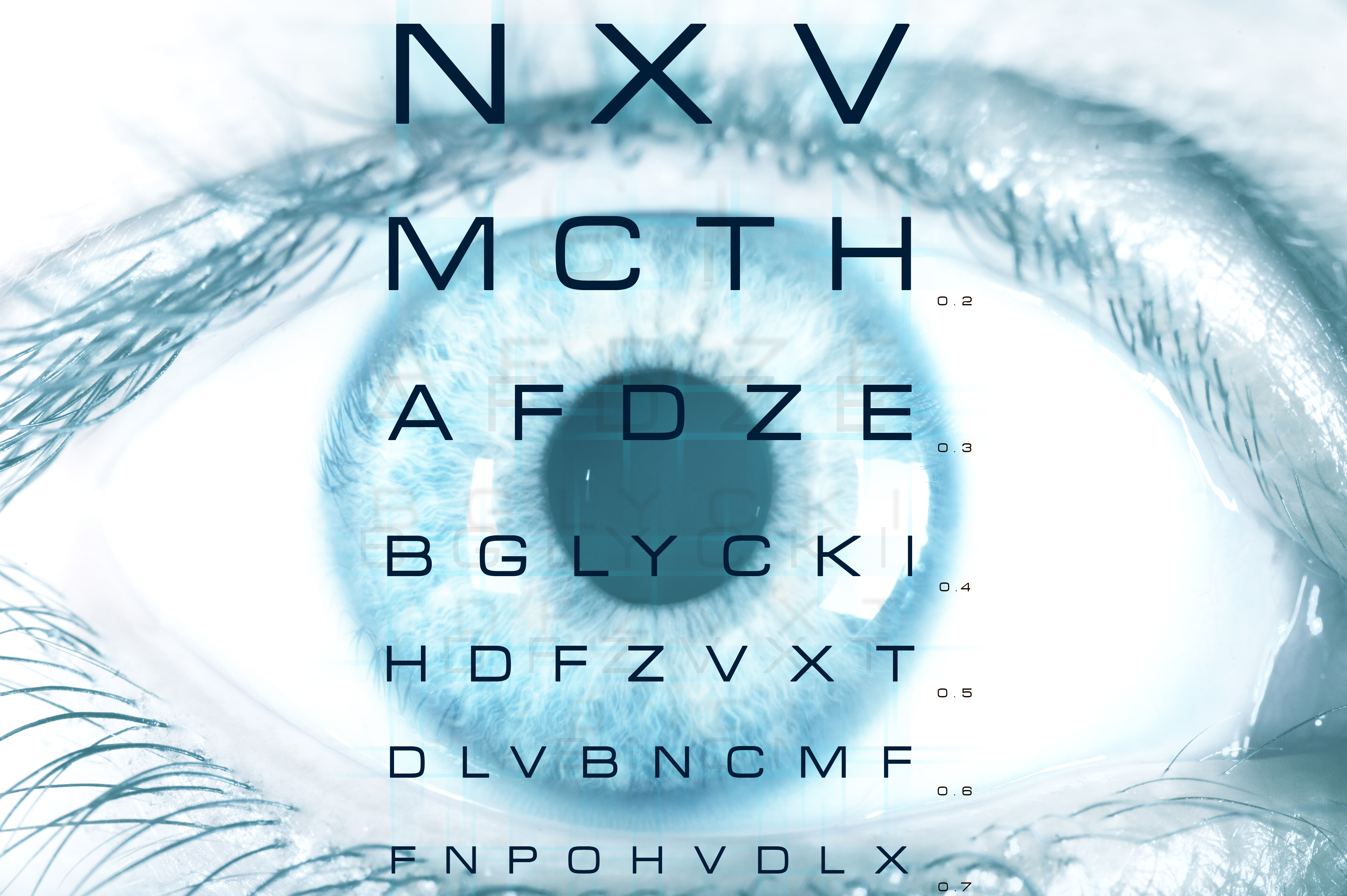 Basic anatomy archives your lasik doctor eye macro with test vision chart geenschuldenfo Image collections